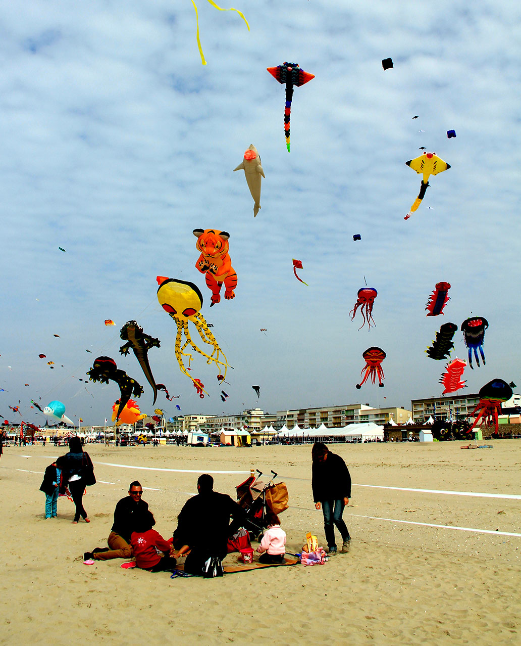 International Kite Festival, Berck-sur-Mer (Cerfs Volants)